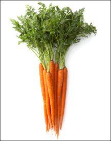carrots-s
